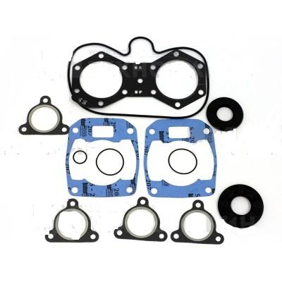 Полный к-т прокладок двигателя, Polaris 550 LX, 550 IQ и прочие