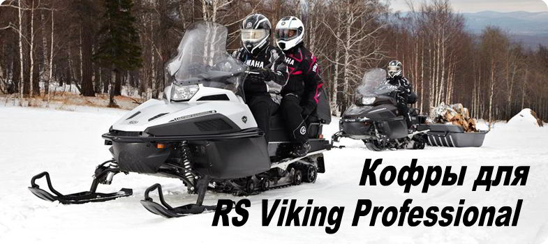 RS Viking Prof_01