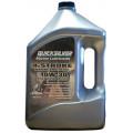 Полусинтетическое масло 10W-30 для ПЛМ, 4 л